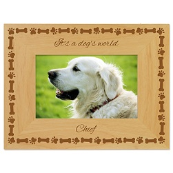 Dogs Tale Picture Frame